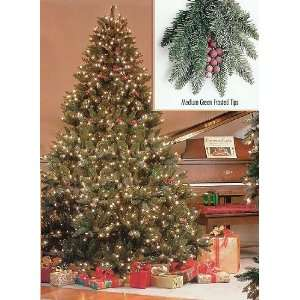 Pre Lit Full Hawthorne Fir Frosted Artificial Christmas Tree