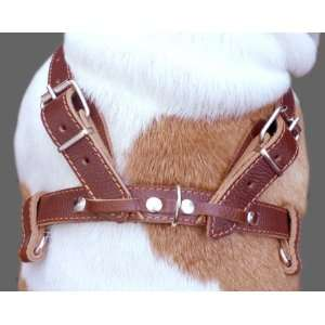 High Quality Genuine Brown Leather Dog Pulling Walking