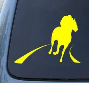 RACE HORSE   Car, Truck, Notebook, Vinyl Decal Sticker #1288  Vinyl