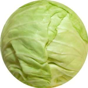com Green Cabbage Art   Fridge Magnet   Fibreglass reinforced plastic