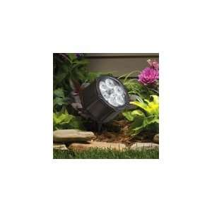 Light Outdoor Flood Light in Textured Black with Clear Tempered glass