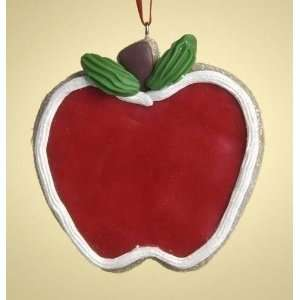Special Teacher Apple Cookie Christmas Ornament 3 #26713