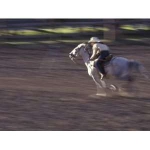 Cowgirl Rides Horse in Barrel Race Rodeo Competition, Big